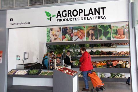 Agroplant Lladó-Tàpia